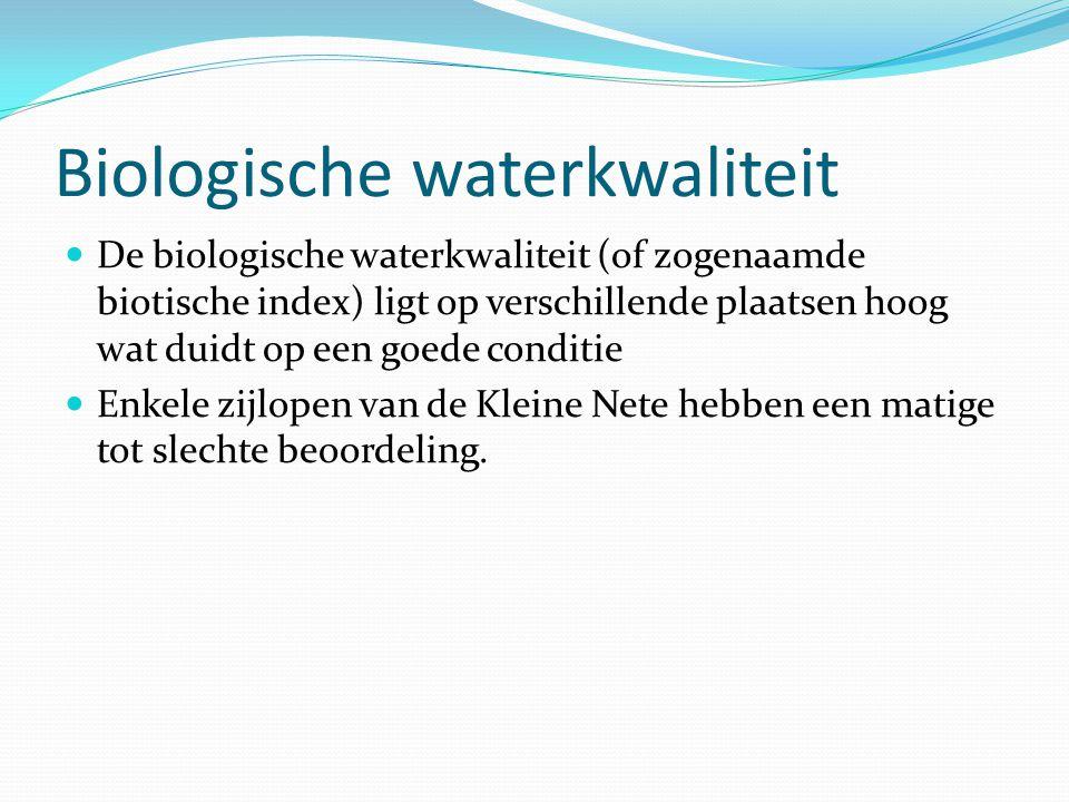 Biologische waterkwaliteit De biologische waterkwaliteit (of zogenaamde biotische index) ligt op verschillende plaatsen hoog wat duidt op een goede co