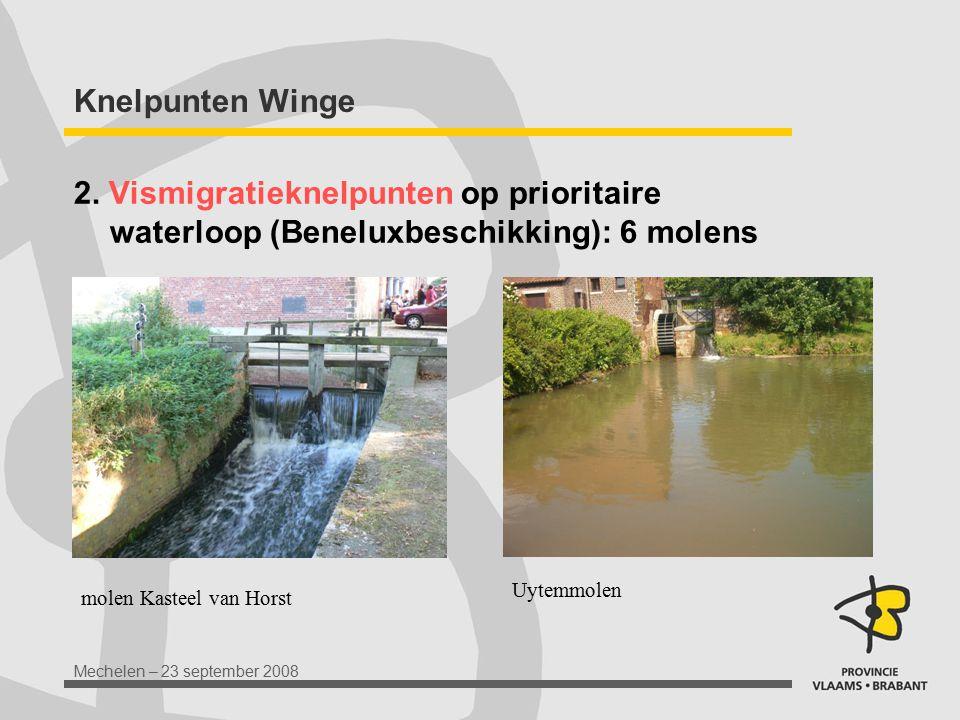 Mechelen – 23 september 2008 Knelpunten Winge 2. Vismigratieknelpunten op prioritaire waterloop (Beneluxbeschikking): 6 molens molen Kasteel van Horst