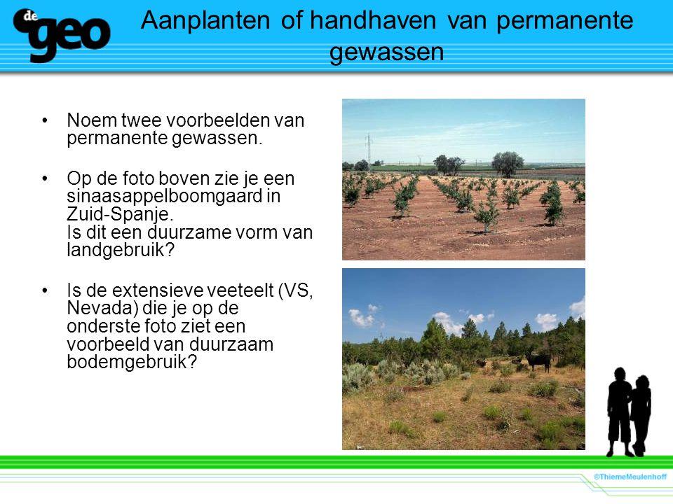 Aanplanten of handhaven van permanente gewassen Noem twee voorbeelden van permanente gewassen. Op de foto boven zie je een sinaasappelboomgaard in Zui