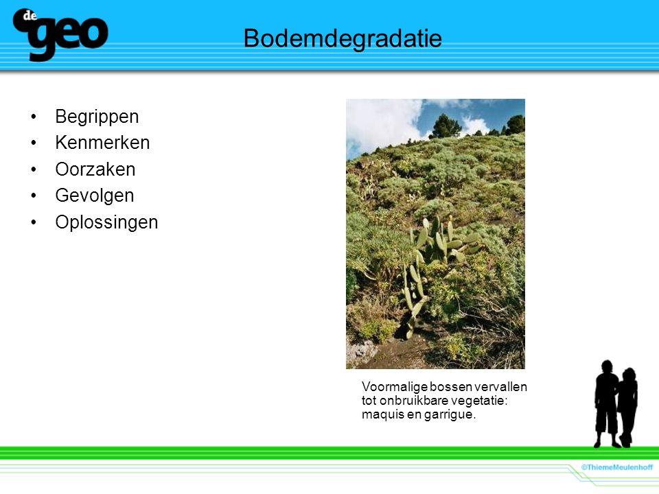 Bodemdegradatie Begrippen Kenmerken Oorzaken Gevolgen Oplossingen Voormalige bossen vervallen tot onbruikbare vegetatie: maquis en garrigue.