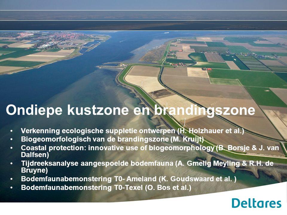 Ondiepe kustzone en brandingszone Verkenning ecologische suppletie ontwerpen (H. Holzhauer et al.) Biogeomorfologisch van de brandingszone (M. Kruijt)