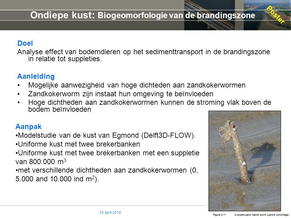 20 april 2010 Ondiepe kust: Biogeomorfologie van de brandingszone Doel Analyse effect van bodemdieren op het sedimenttransport in de brandingszone in