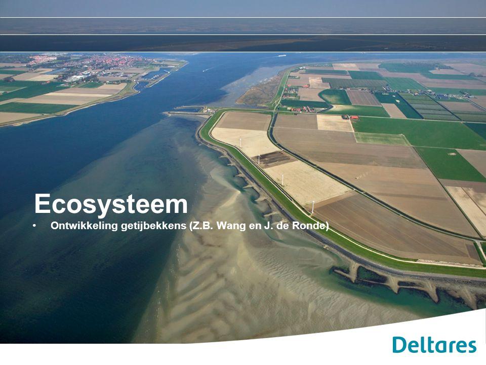 20 april 2010 Ecosysteem: Ontwikkeling getijbekkens Doel Het in beeld brengen van de effecten van grootschalige ingrepen, zoals de afsluiting van getijbekkens op verschillende delen van het kustsysteem Afgelopen eeuw hebben er grootschalige ingrepen in het kustsysteem plaatsgevonden in het kader van: -Veiligheid -Landaanwinning Het afsluiten van getijbekkens beïnvloed: 1.de grootschalige morfologische ontwikkeling en sedimentverdeling van: het getijbekken zelf de kust en eb-delta's 2.de morfologie op kleinere schaal van: de geulen en intergetijdengebieden zoals platen en slikken