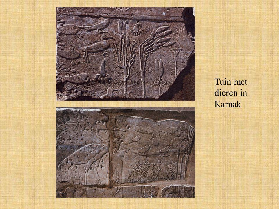 Tuin met dieren in Karnak