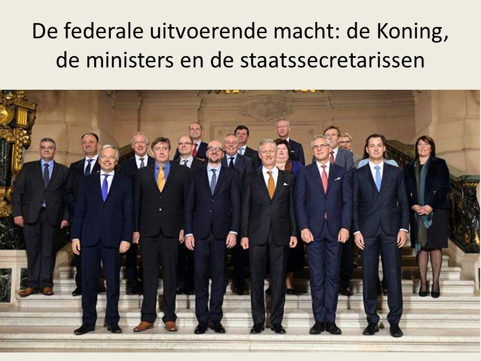 De federale uitvoerende macht: de Koning, de ministers en de staatssecretarissen