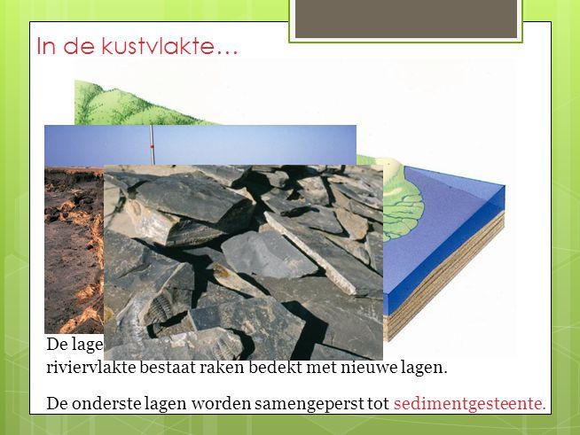 In de kustvlakte… De lagen sediment waaruit de riviervlakte bestaat raken bedekt met nieuwe lagen. De onderste lagen worden samengeperst tot sedimentg