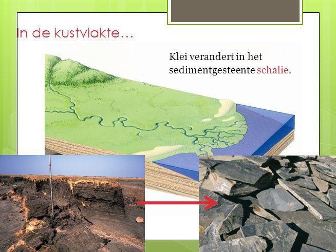 In de kustvlakte… Klei verandert in het sedimentgesteente schalie.