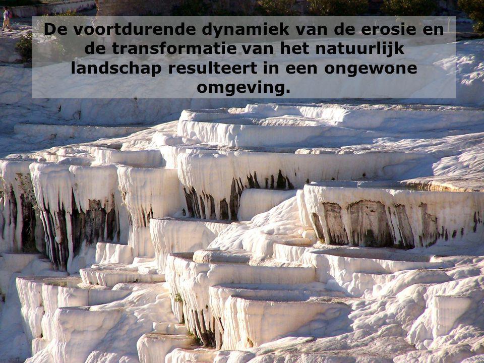 De voortdurende dynamiek van de erosie en de transformatie van het natuurlijk landschap resulteert in een ongewone omgeving.