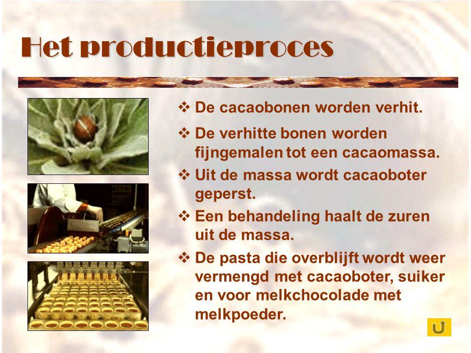 Het productieproces  De cacaobonen worden verhit.  De verhitte bonen worden fijngemalen tot een cacaomassa.  Uit de massa wordt cacaoboter geperst.