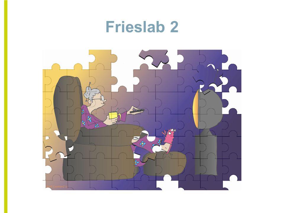 Frieslab 2