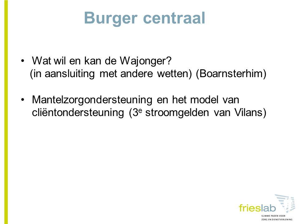 Burger centraal Wat wil en kan de Wajonger.