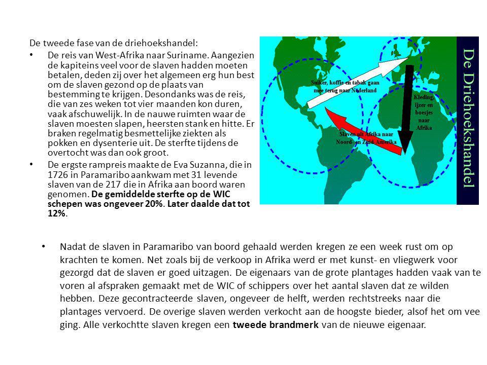 De tweede fase van de driehoekshandel: De reis van West-Afrika naar Suriname. Aangezien de kapiteins veel voor de slaven hadden moeten betalen, deden