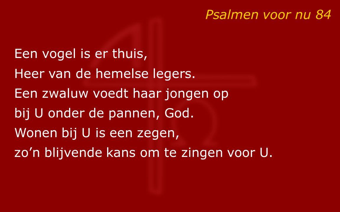 Psalmen voor nu 84 Een vogel is er thuis, Heer van de hemelse legers. Een zwaluw voedt haar jongen op bij U onder de pannen, God. Wonen bij U is een z