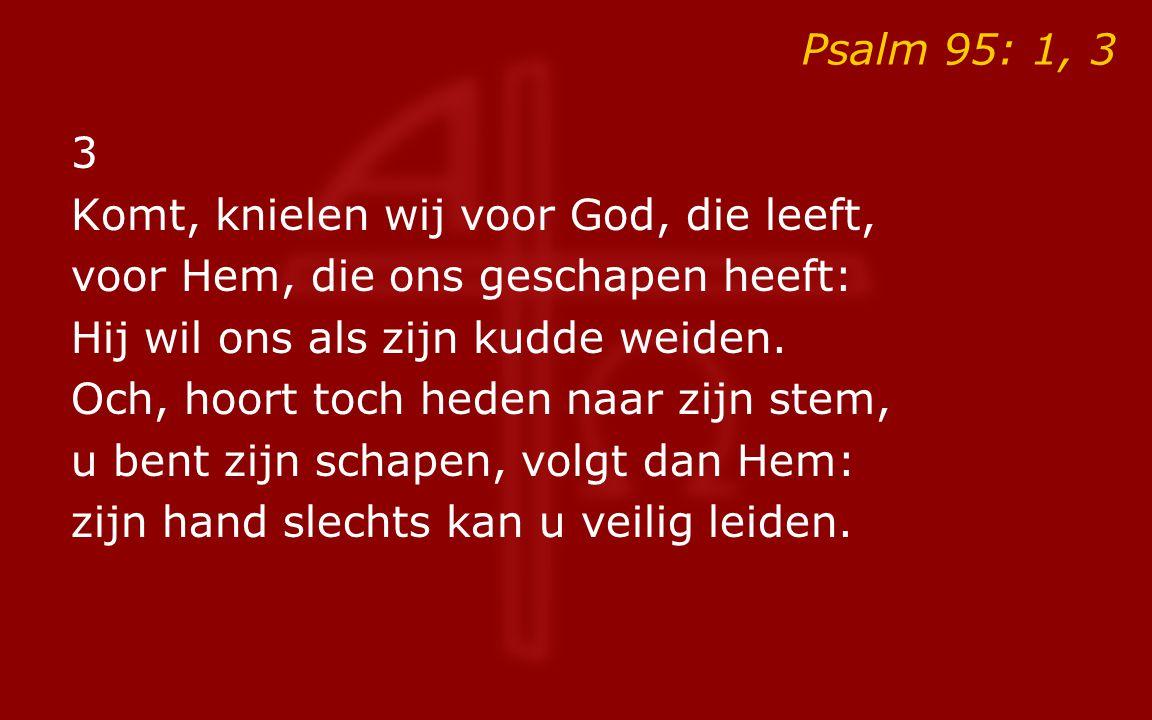 Psalm 95: 1, 3 3 Komt, knielen wij voor God, die leeft, voor Hem, die ons geschapen heeft: Hij wil ons als zijn kudde weiden. Och, hoort toch heden na