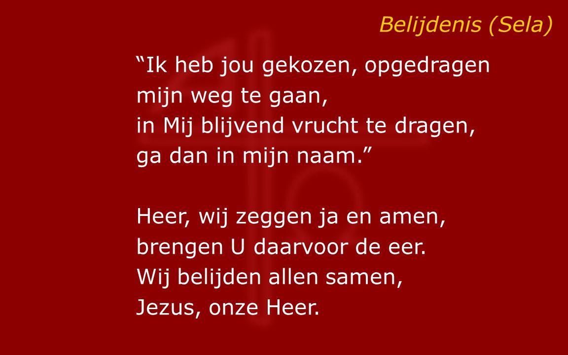 """Belijdenis (Sela) """"Ik heb jou gekozen, opgedragen mijn weg te gaan, in Mij blijvend vrucht te dragen, ga dan in mijn naam."""" Heer, wij zeggen ja en ame"""