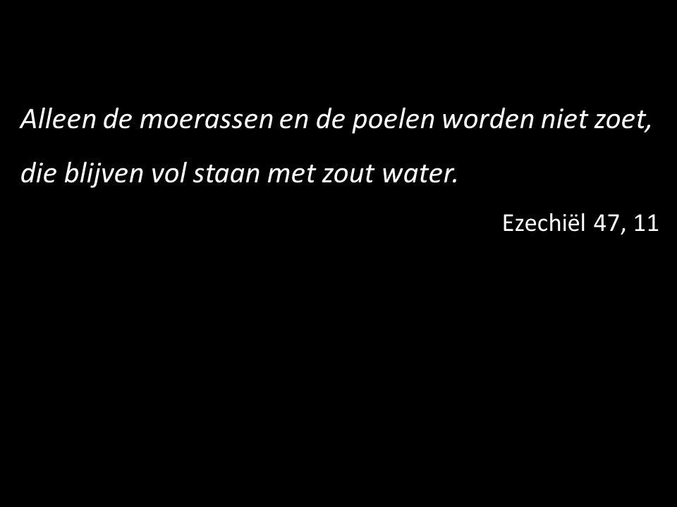 Alleen de moerassen en de poelen worden niet zoet, die blijven vol staan met zout water. Ezechiël 47, 11