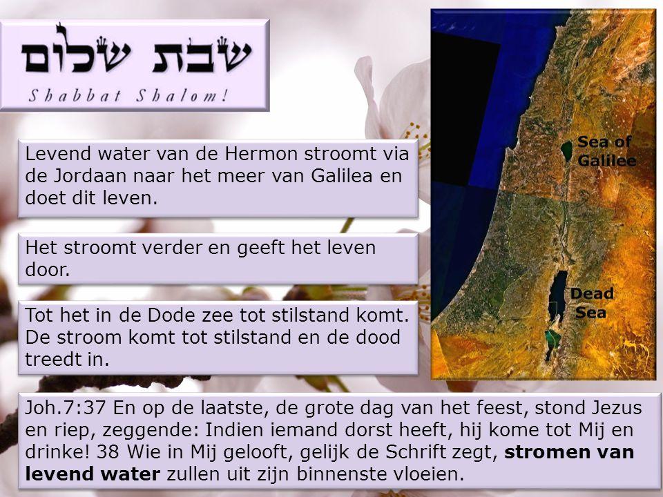 Levend water van de Hermon stroomt via de Jordaan naar het meer van Galilea en doet dit leven.