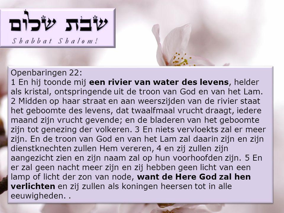 Openbaringen 22: 1 En hij toonde mij een rivier van water des levens, helder als kristal, ontspringende uit de troon van God en van het Lam.