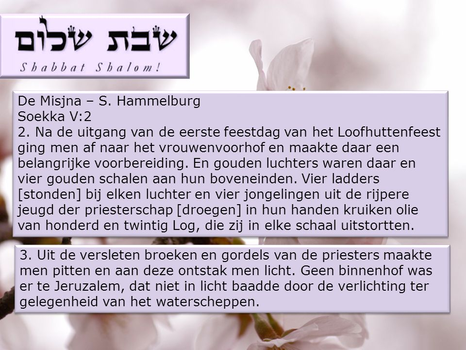 De Misjna – S.Hammelburg Soekka V:2 2.