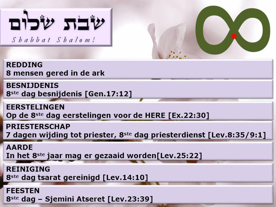 REDDING 8 mensen gered in de ark REDDING 8 mensen gered in de ark BESNIJDENIS 8 ste dag besnijdenis [Gen.17:12] BESNIJDENIS 8 ste dag besnijdenis [Gen.17:12] EERSTELINGEN Op de 8 ste dag eerstelingen voor de HERE [Ex.22:30] EERSTELINGEN Op de 8 ste dag eerstelingen voor de HERE [Ex.22:30] REINIGING 8 ste dag tsarat gereinigd [Lev.14:10] REINIGING 8 ste dag tsarat gereinigd [Lev.14:10] PRIESTERSCHAP 7 dagen wijding tot priester, 8 ste dag priesterdienst [Lev.8:35/9:1] PRIESTERSCHAP 7 dagen wijding tot priester, 8 ste dag priesterdienst [Lev.8:35/9:1] AARDE In het 8 ste jaar mag er gezaaid worden[Lev.25:22] AARDE In het 8 ste jaar mag er gezaaid worden[Lev.25:22] FEESTEN 8 ste dag – Sjemini Atseret [Lev.23:39] FEESTEN 8 ste dag – Sjemini Atseret [Lev.23:39]