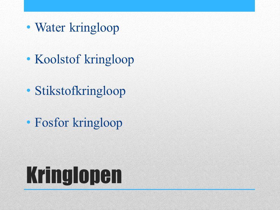 waterkringloop http://www.schooltv.nl/beeldbank/clip/20060209_kringlo op01 http://www.schooltv.nl/beeldbank/clip/20060209_kringlo op01