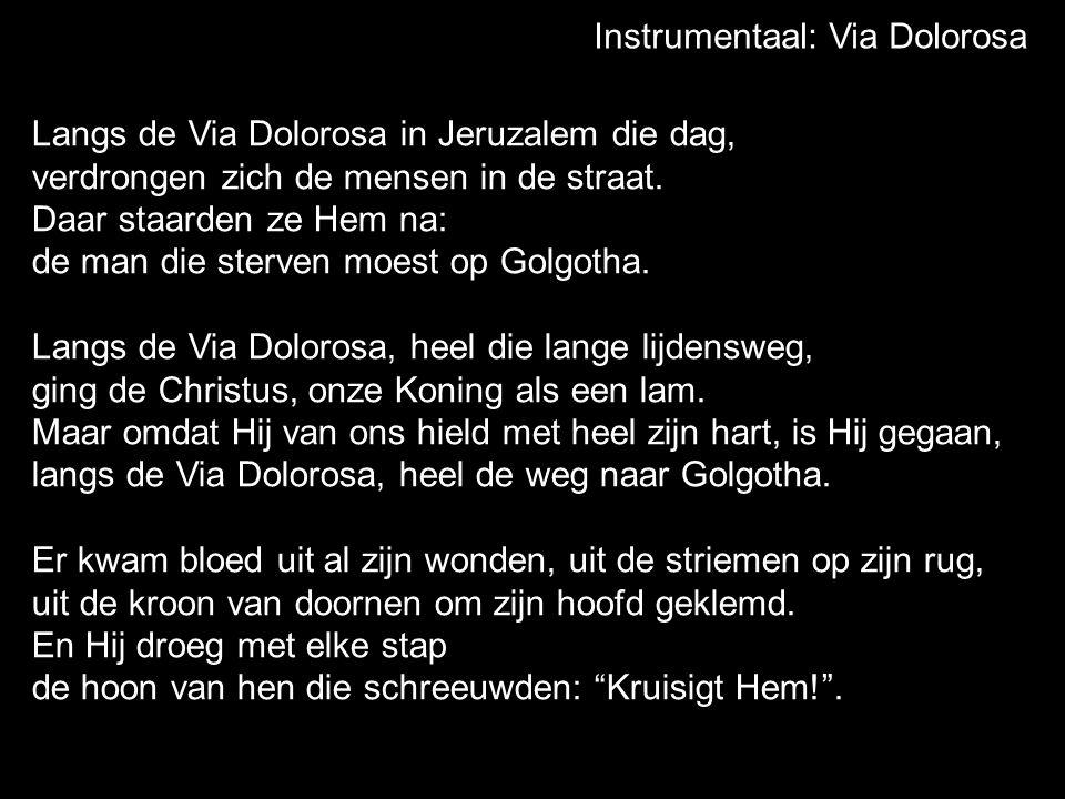 Instrumentaal: Via Dolorosa Langs de Via Dolorosa, heel die lange lijdensweg, ging de Christus, onze Koning als een lam.