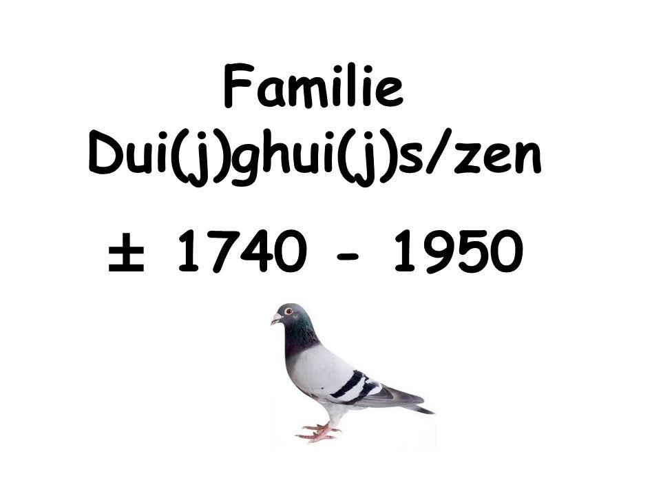 Familie Dui(j)ghui(j)s/zen ± 1740 - 1950