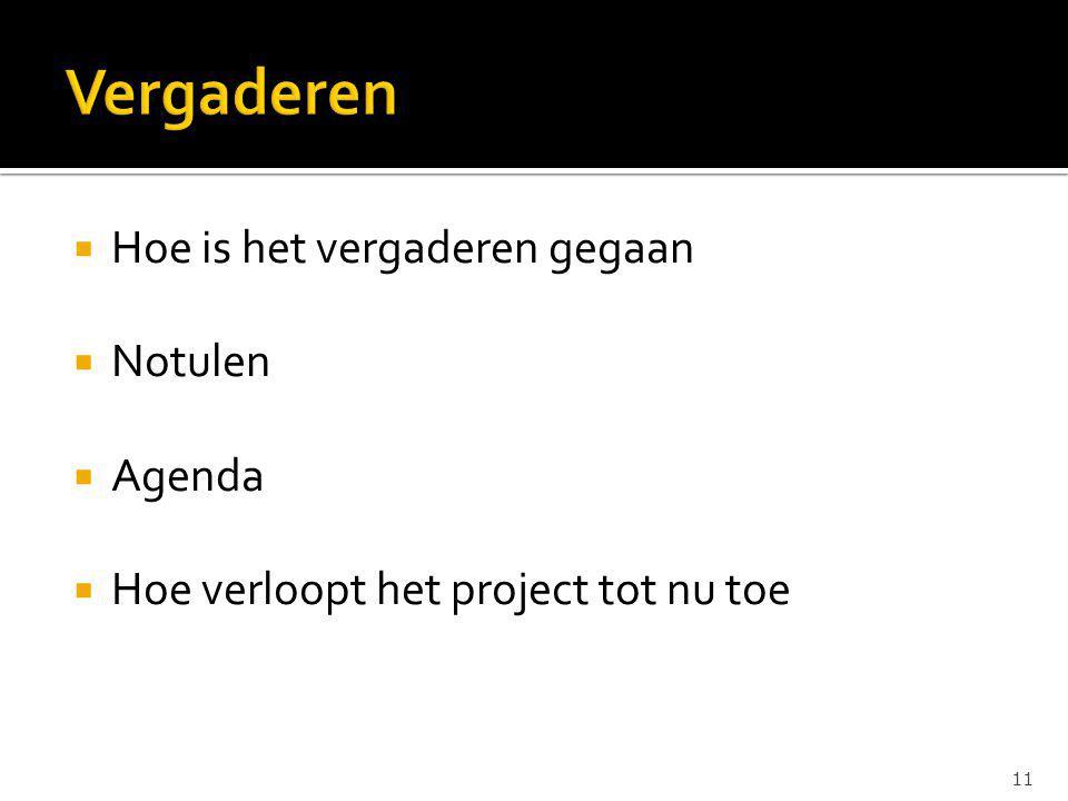  Hoe is het vergaderen gegaan  Notulen  Agenda  Hoe verloopt het project tot nu toe 11