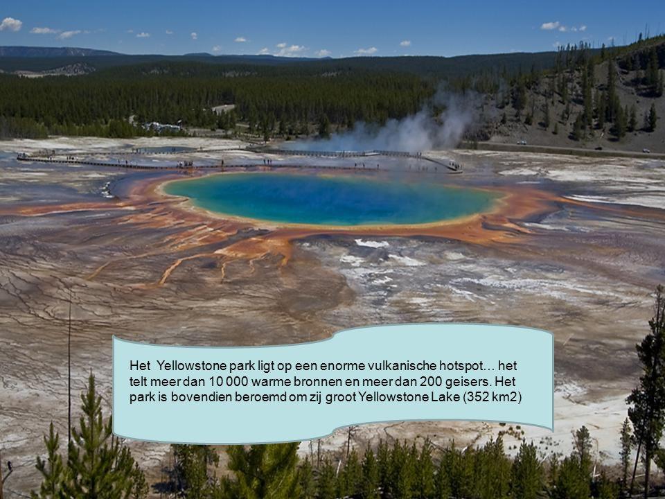 Het Yellowstone park ligt op een enorme vulkanische hotspot… het telt meer dan 10 000 warme bronnen en meer dan 200 geisers.