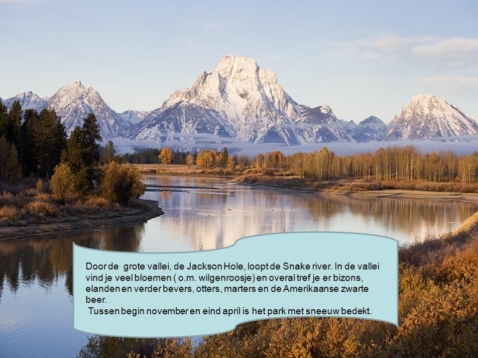 Door de grote vallei, de Jackson Hole, loopt de Snake river.