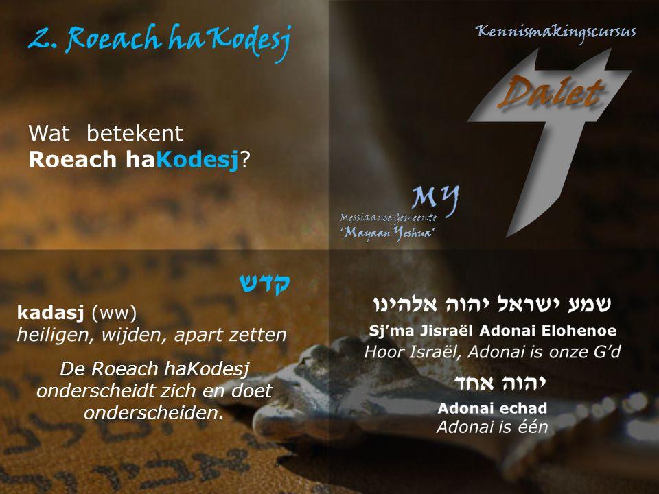 Wat betekent Roeach haKodesj? De Roeach haKodesj onderscheidt zich en doet onderscheiden.
