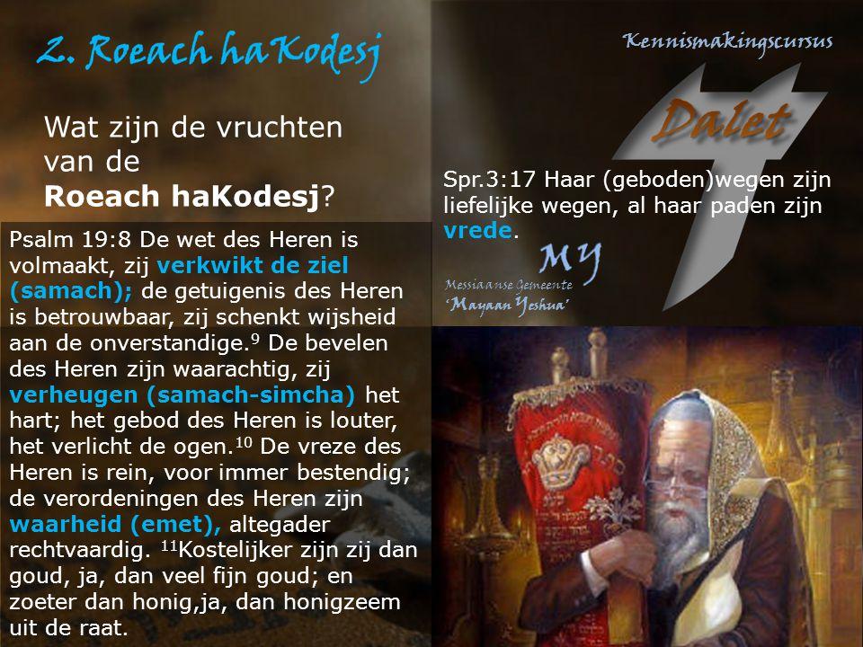 Wat zijn de vruchten van de Roeach haKodesj? Psalm 19:8 De wet des Heren is volmaakt, zij verkwikt de ziel (samach); de getuigenis des Heren is betrou