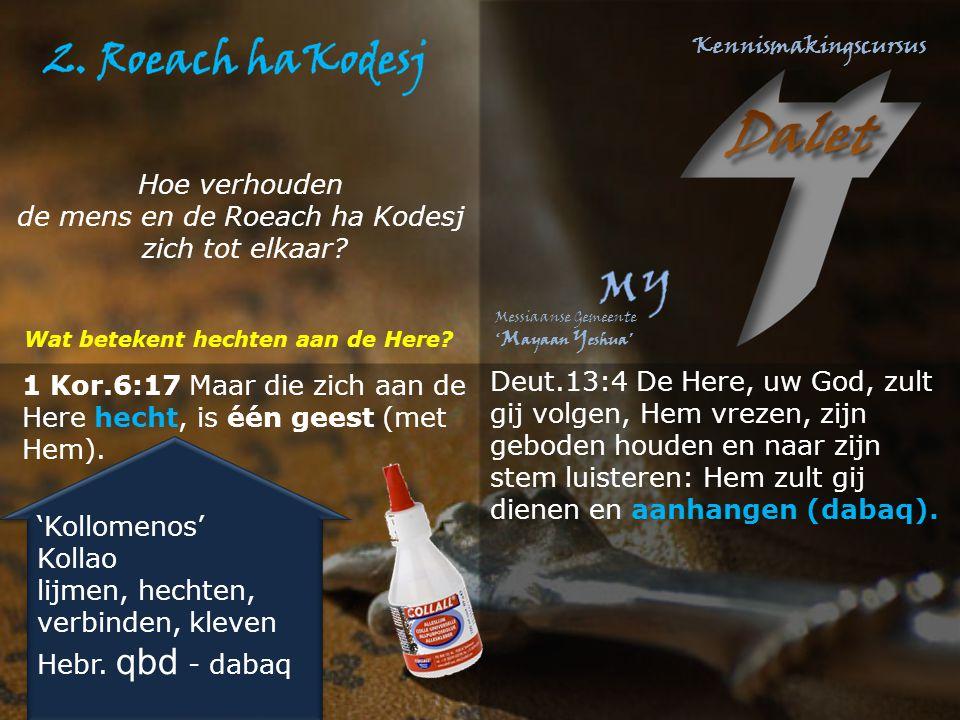 1 Kor.6:17 Maar die zich aan de Here hecht, is één geest (met Hem). 'Kollomenos' Kollao lijmen, hechten, verbinden, kleven Hebr. qbd - dabaq 'Kollomen