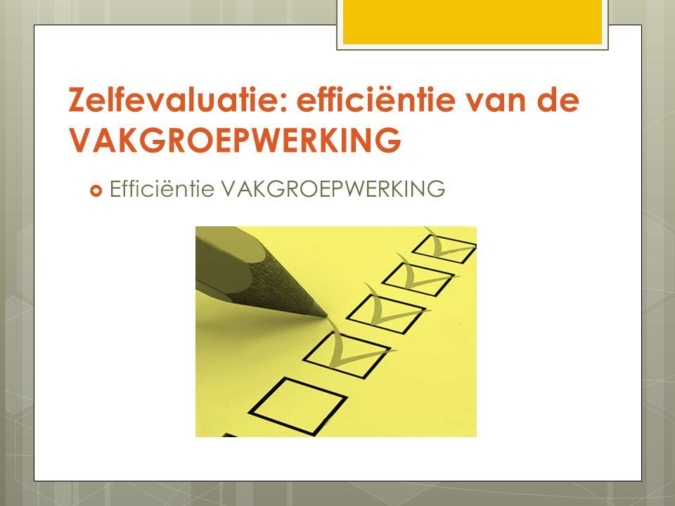 Zelfevaluatie: efficiëntie van de VAKGROEPWERKING  Efficiëntie VAKGROEPWERKING