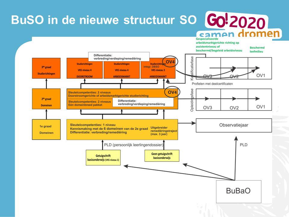 BuSO in de nieuwe structuur SO