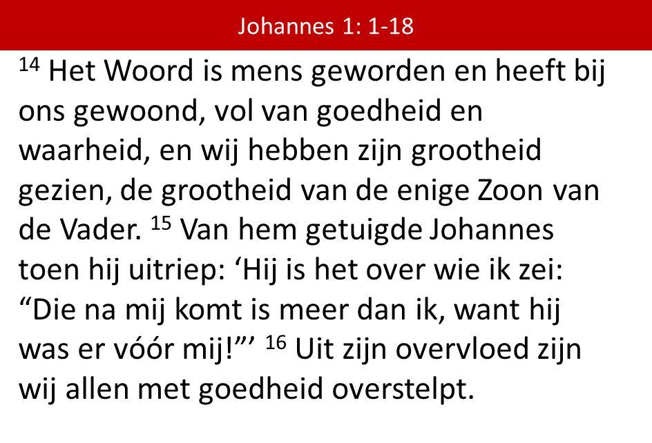 14 Het Woord is mens geworden en heeft bij ons gewoond, vol van goedheid en waarheid, en wij hebben zijn grootheid gezien, de grootheid van de enige Z