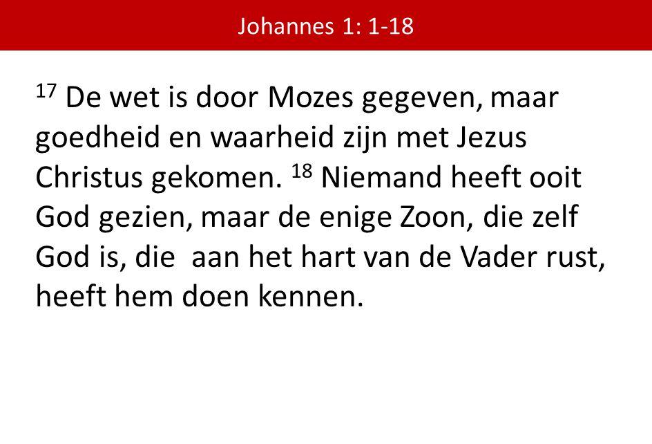 17 De wet is door Mozes gegeven, maar goedheid en waarheid zijn met Jezus Christus gekomen. 18 Niemand heeft ooit God gezien, maar de enige Zoon, die