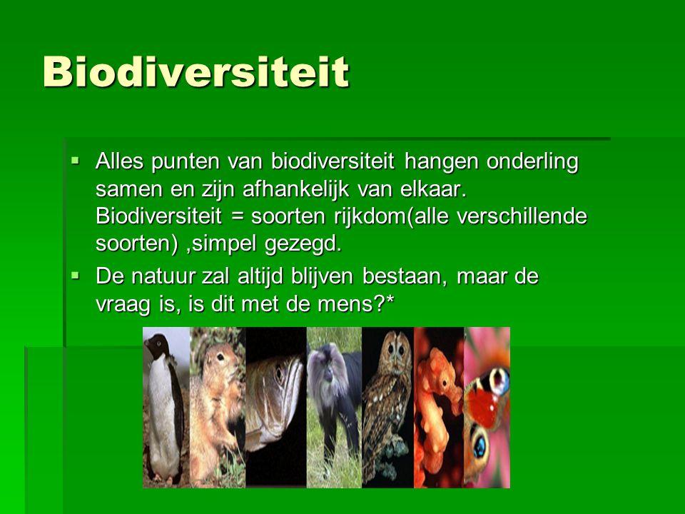 Biodiversiteit  Alles punten van biodiversiteit hangen onderling samen en zijn afhankelijk van elkaar. Biodiversiteit = soorten rijkdom(alle verschil