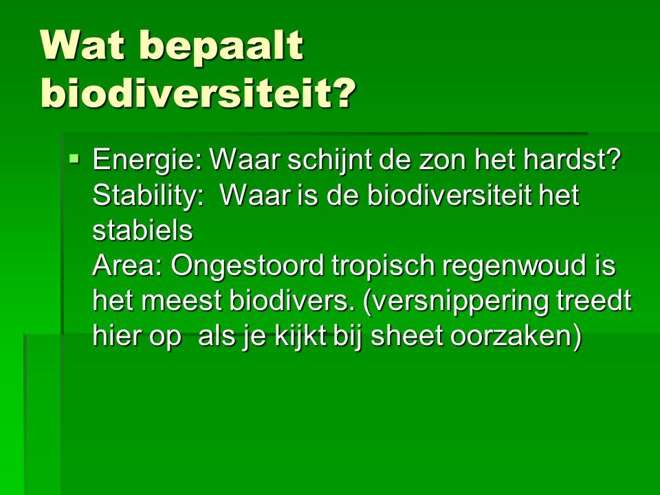 Wat bepaalt biodiversiteit?  Energie: Waar schijnt de zon het hardst? Stability: Waar is de biodiversiteit het stabiels Area: Ongestoord tropisch reg