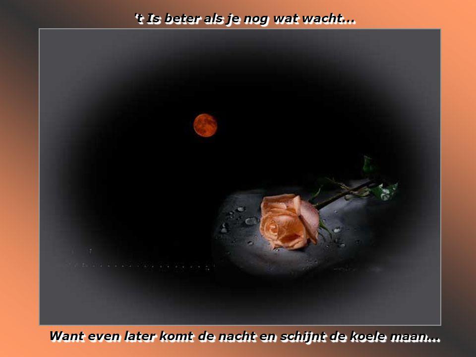 t Is beter als je nog wat wacht...Want even later komt de nacht en schijnt de koele maan...