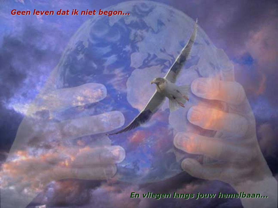 Geen leven dat ik niet begon... En vliegen langs jouw hemelbaan...