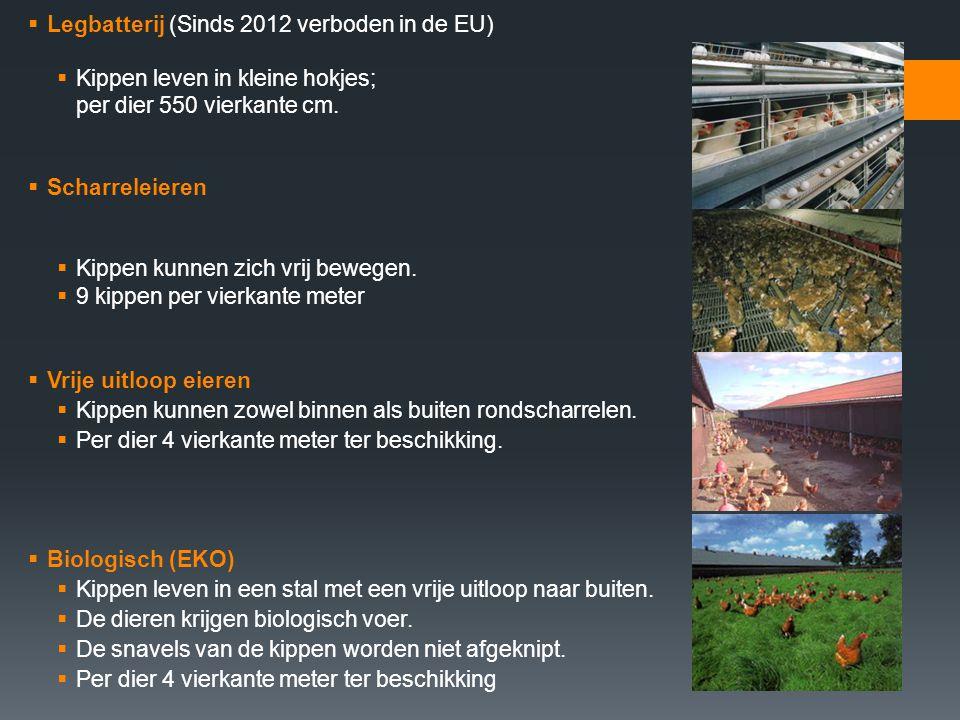  Legbatterij (Sinds 2012 verboden in de EU)  Kippen leven in kleine hokjes; per dier 550 vierkante cm.  Scharreleieren  Kippen kunnen zich vrij be