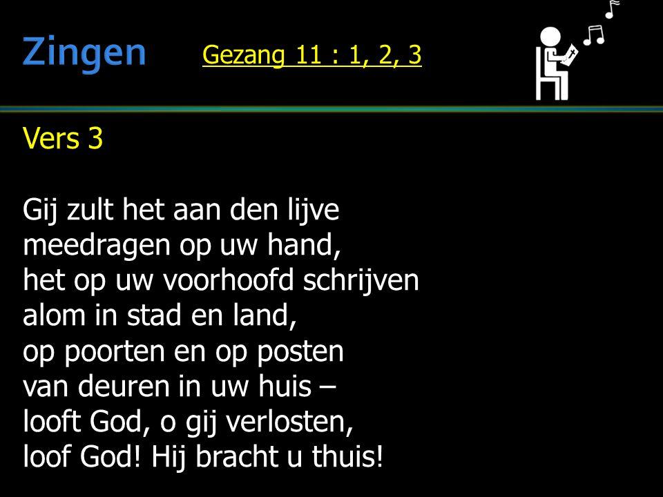 Vers 3 Gij zult het aan den lijve meedragen op uw hand, het op uw voorhoofd schrijven alom in stad en land, op poorten en op posten van deuren in uw h