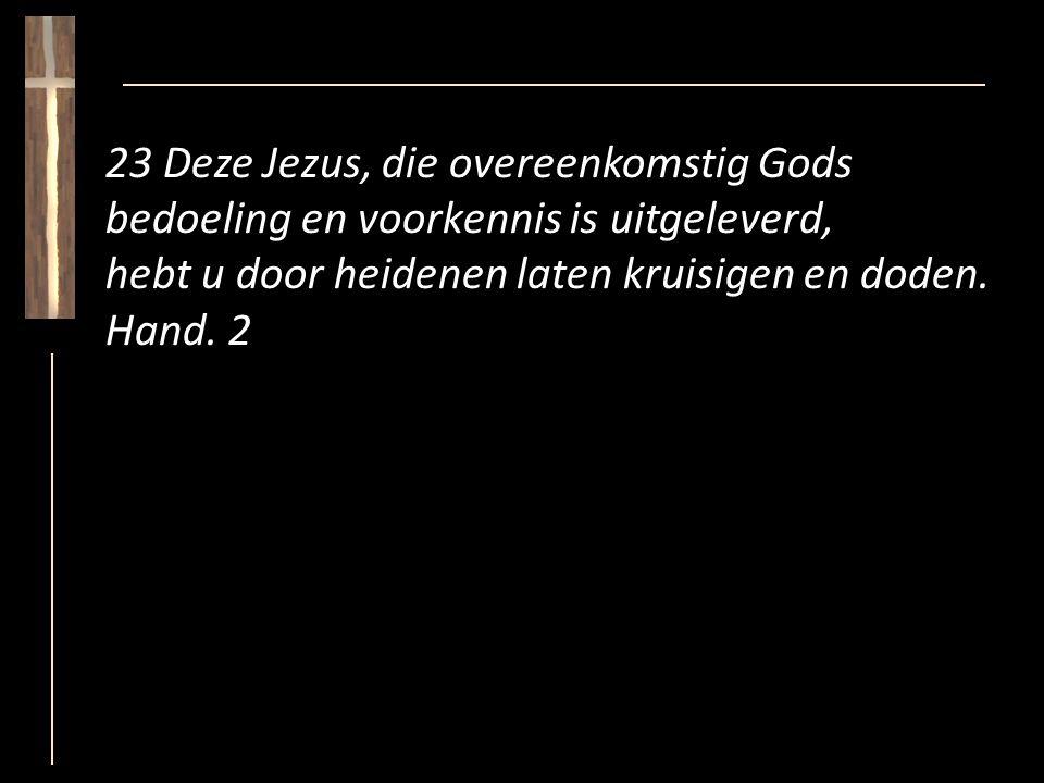 23 Deze Jezus, die overeenkomstig Gods bedoeling en voorkennis is uitgeleverd, hebt u door heidenen laten kruisigen en doden.