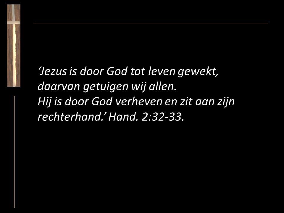 'Jezus is door God tot leven gewekt, daarvan getuigen wij allen.