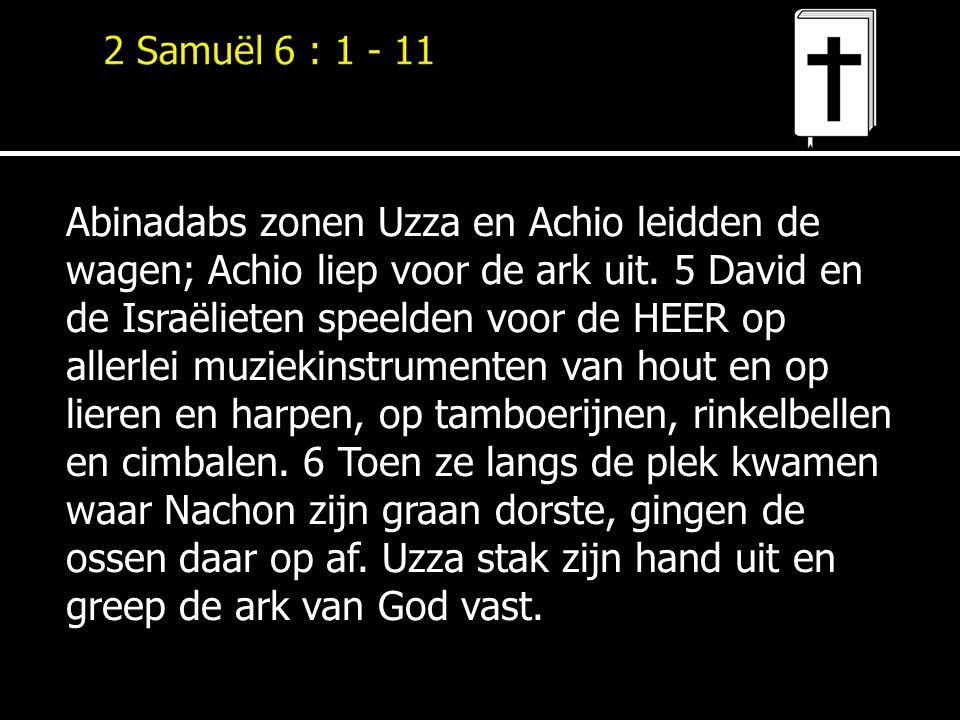Abinadabs zonen Uzza en Achio leidden de wagen; Achio liep voor de ark uit. 5 David en de Israëlieten speelden voor de HEER op allerlei muziekinstrume