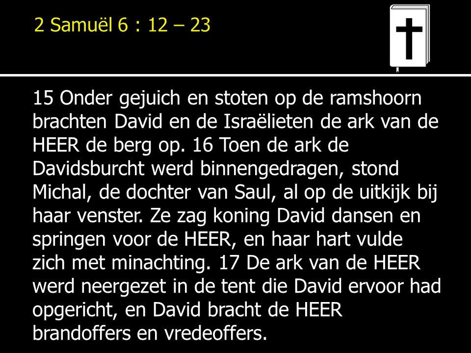 15 Onder gejuich en stoten op de ramshoorn brachten David en de Israëlieten de ark van de HEER de berg op. 16 Toen de ark de Davidsburcht werd binneng