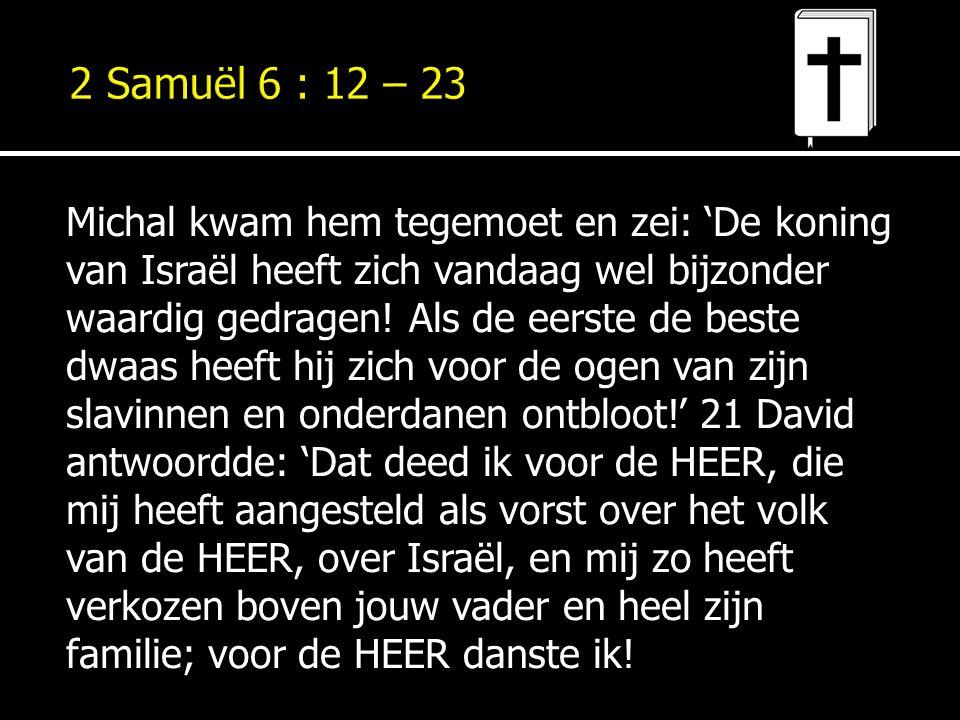 Michal kwam hem tegemoet en zei: 'De koning van Israël heeft zich vandaag wel bijzonder waardig gedragen! Als de eerste de beste dwaas heeft hij zich