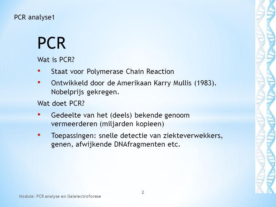 PCR Wat is PCR? Staat voor Polymerase Chain Reaction Ontwikkeld door de Amerikaan Karry Mullis (1983). Nobelprijs gekregen. Wat doet PCR? Gedeelte van