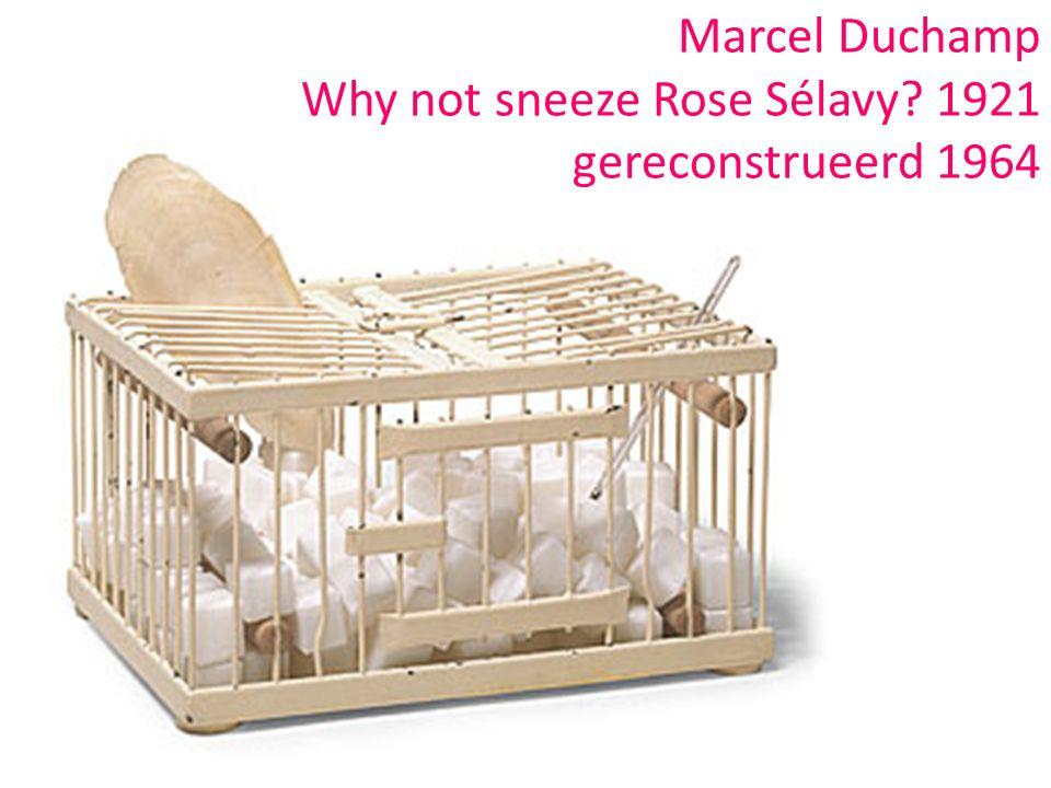 Marcel Duchamp Why not sneeze Rose Sélavy? 1921 gereconstrueerd 1964